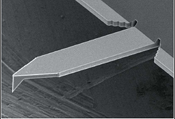 SEM image of tetrahedral tip cantilever (OMCL-AC160TS-